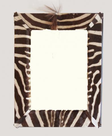 Zebra Mirror with Mane